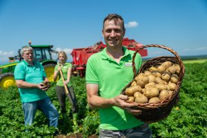Heurige Kartoffeln