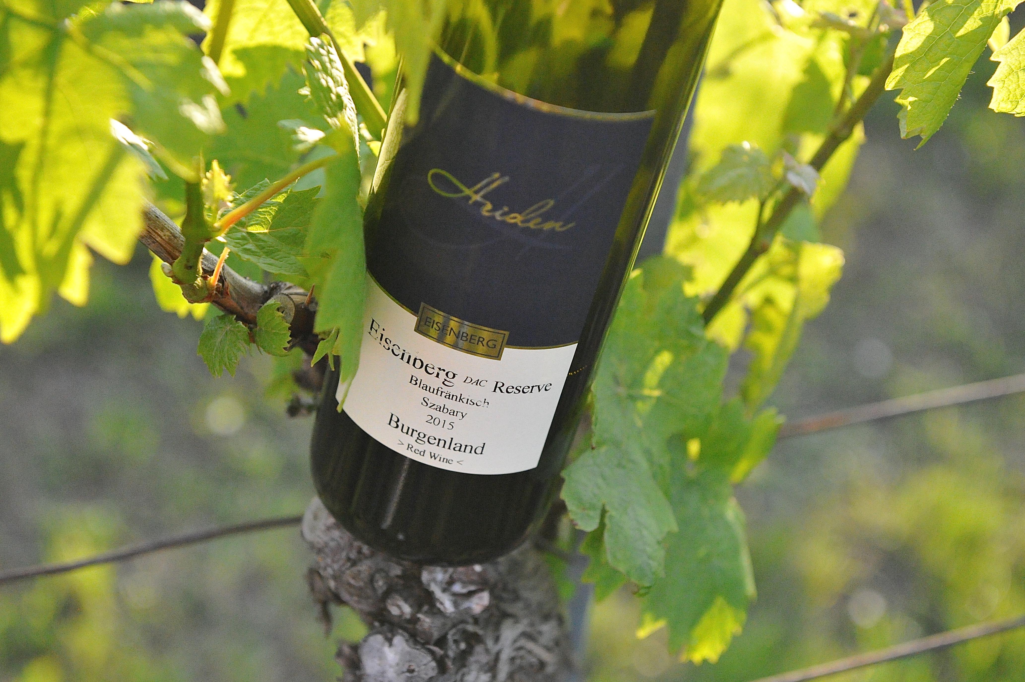 Weinbau Heiden Eisenberg, Weinidylle Südburgenland