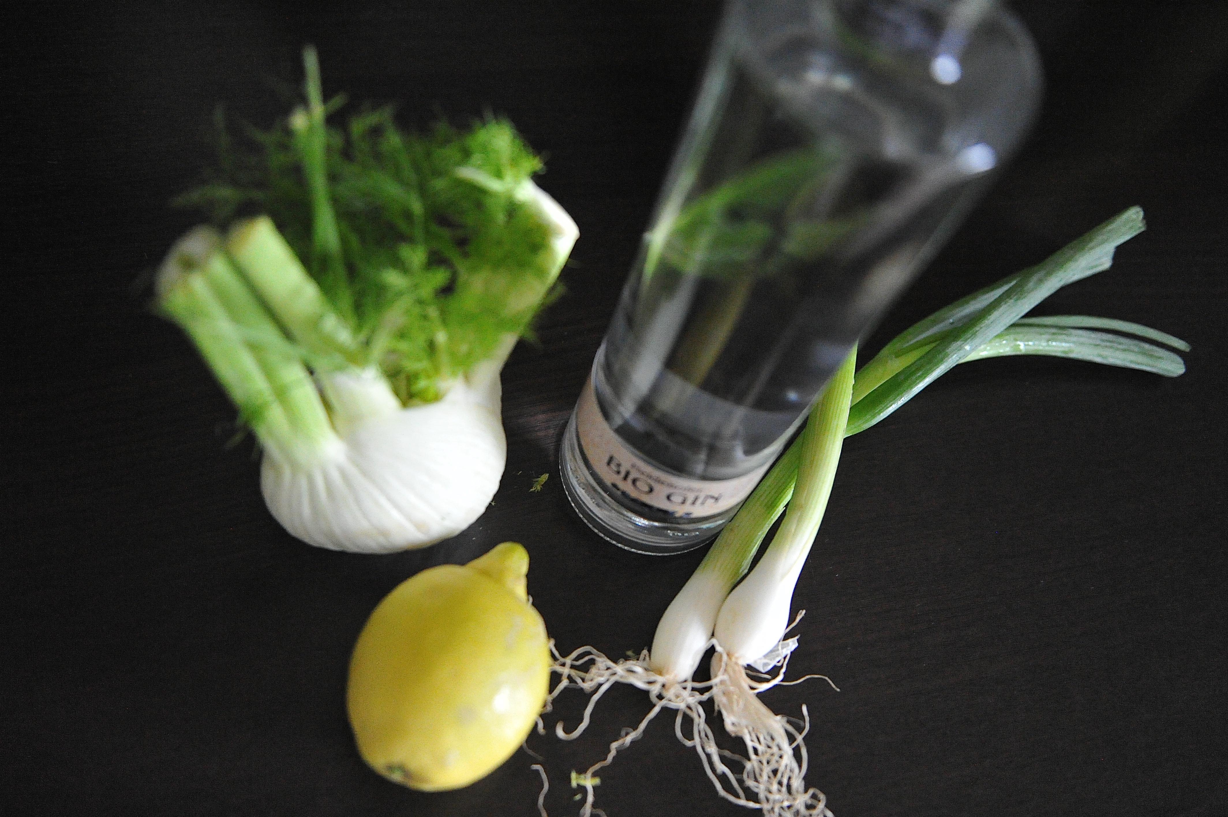 Gin, Zitrone, Fenchel und Frühlingszwiebel. Drink, Salat oder Gemüse.