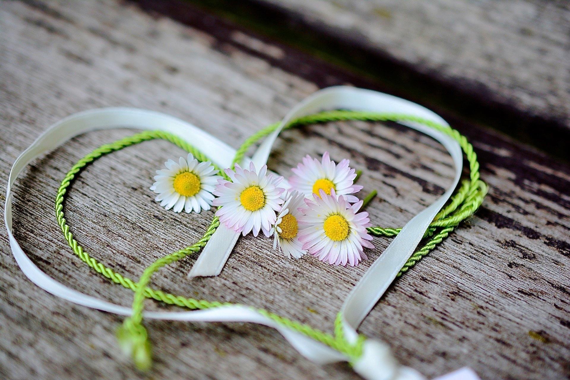Herz aus Bändern mit Gänseblümchen