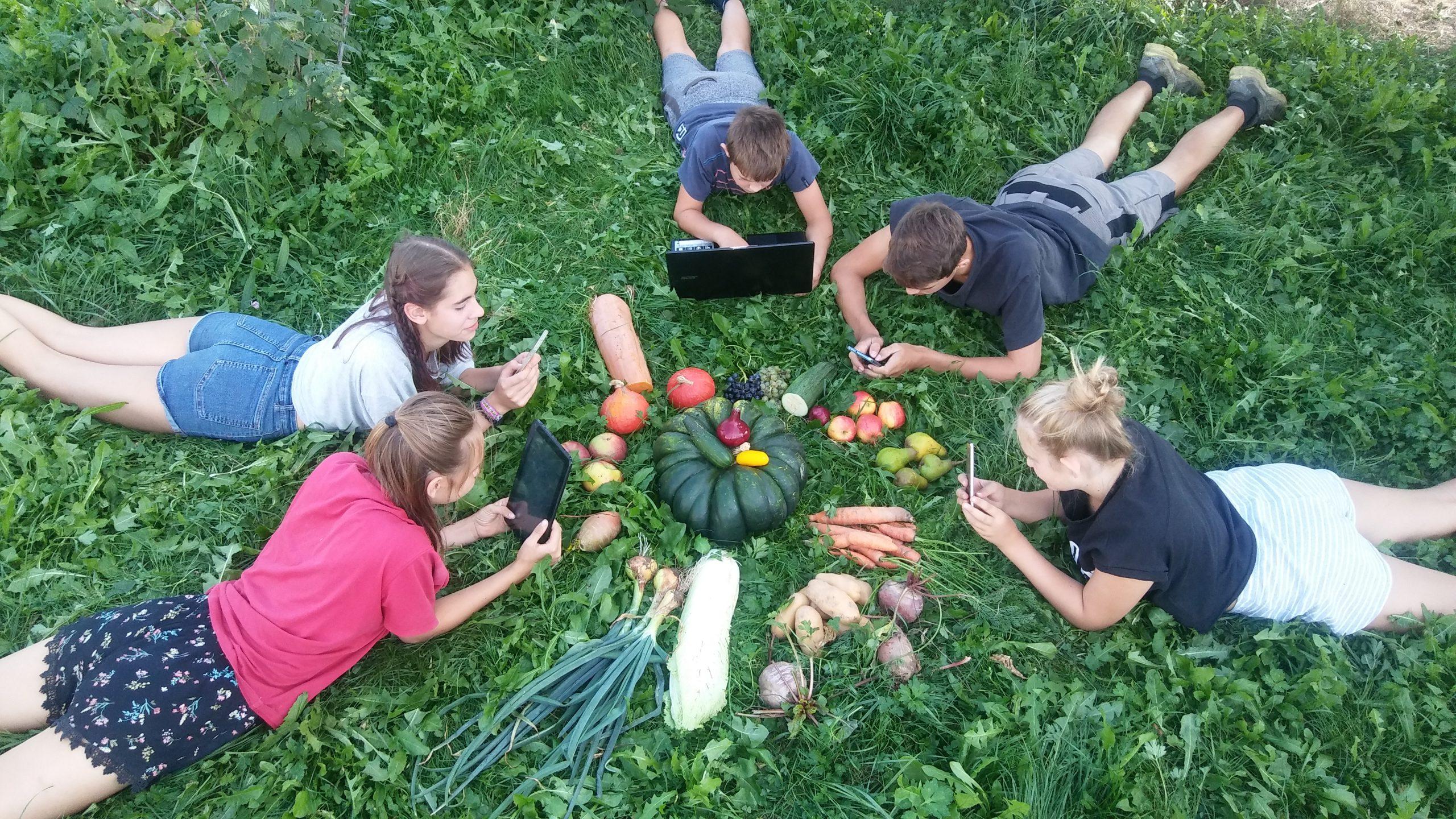 Kinder liegen in der Wiese mit Gemüse und Laptop. Schule am Bauernhof