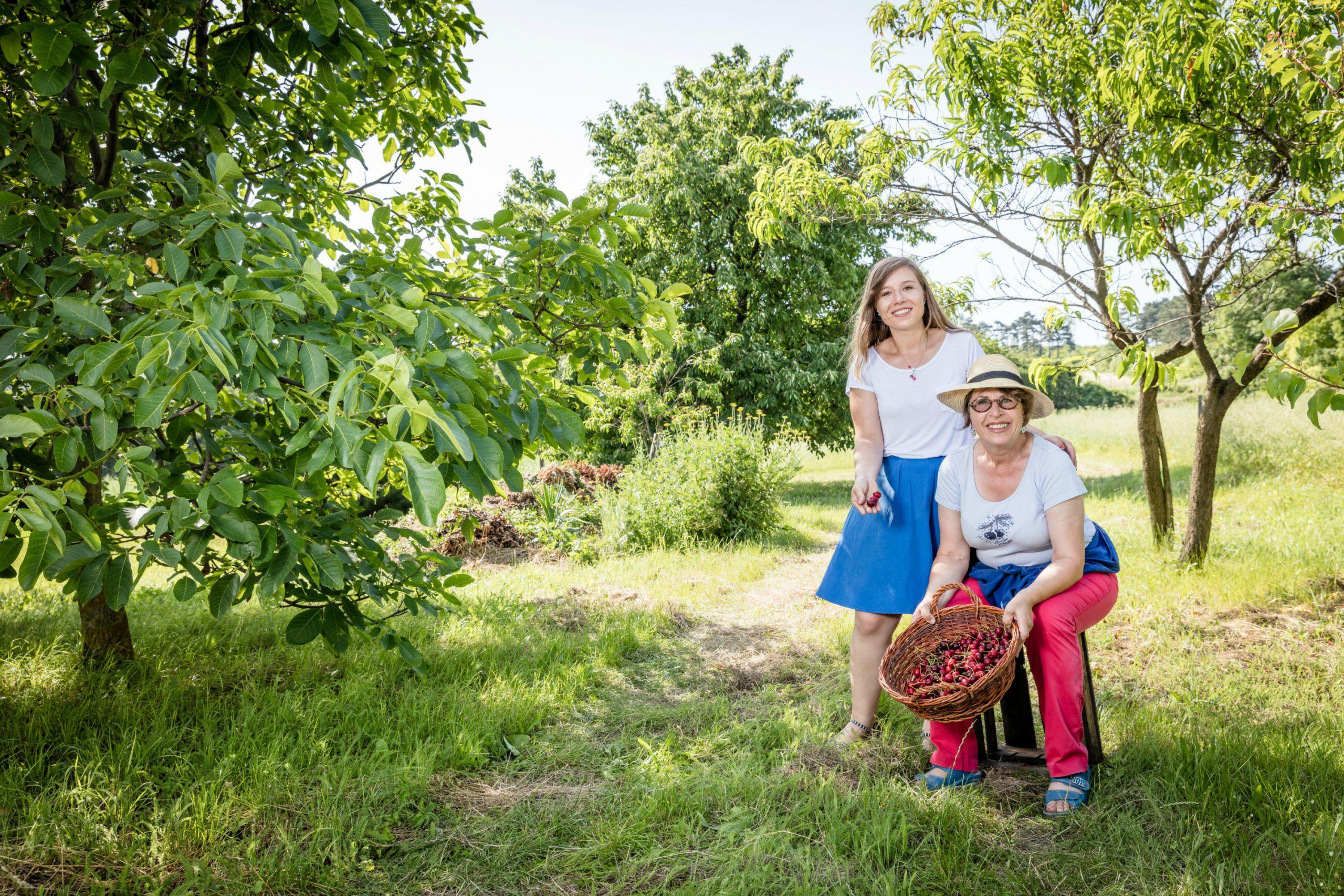 Andrea und Rosi Strohmayer mit eine Korb Kirschen zwischen Kirschbäumen