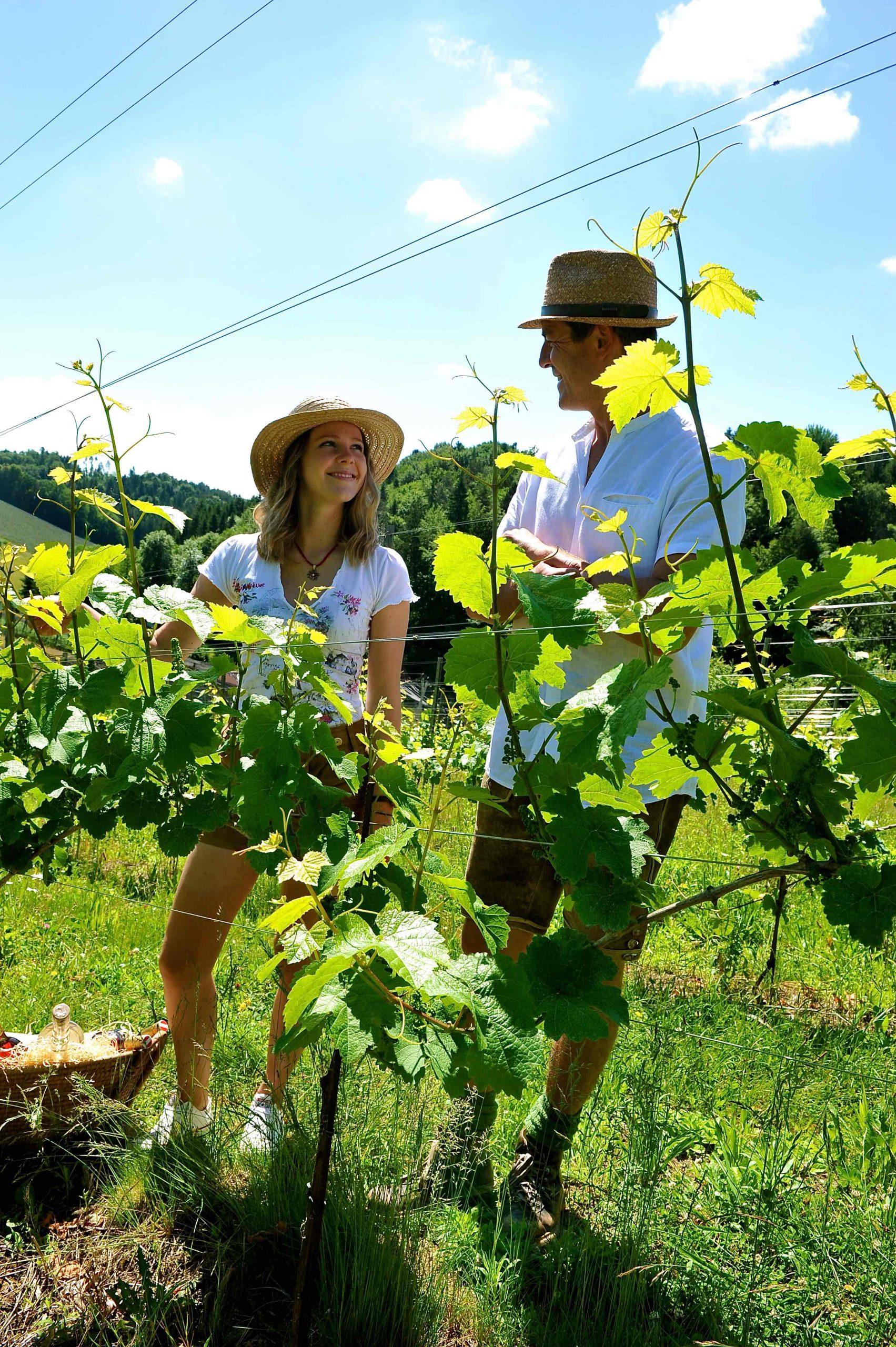 Frau und Mann im Weingarten