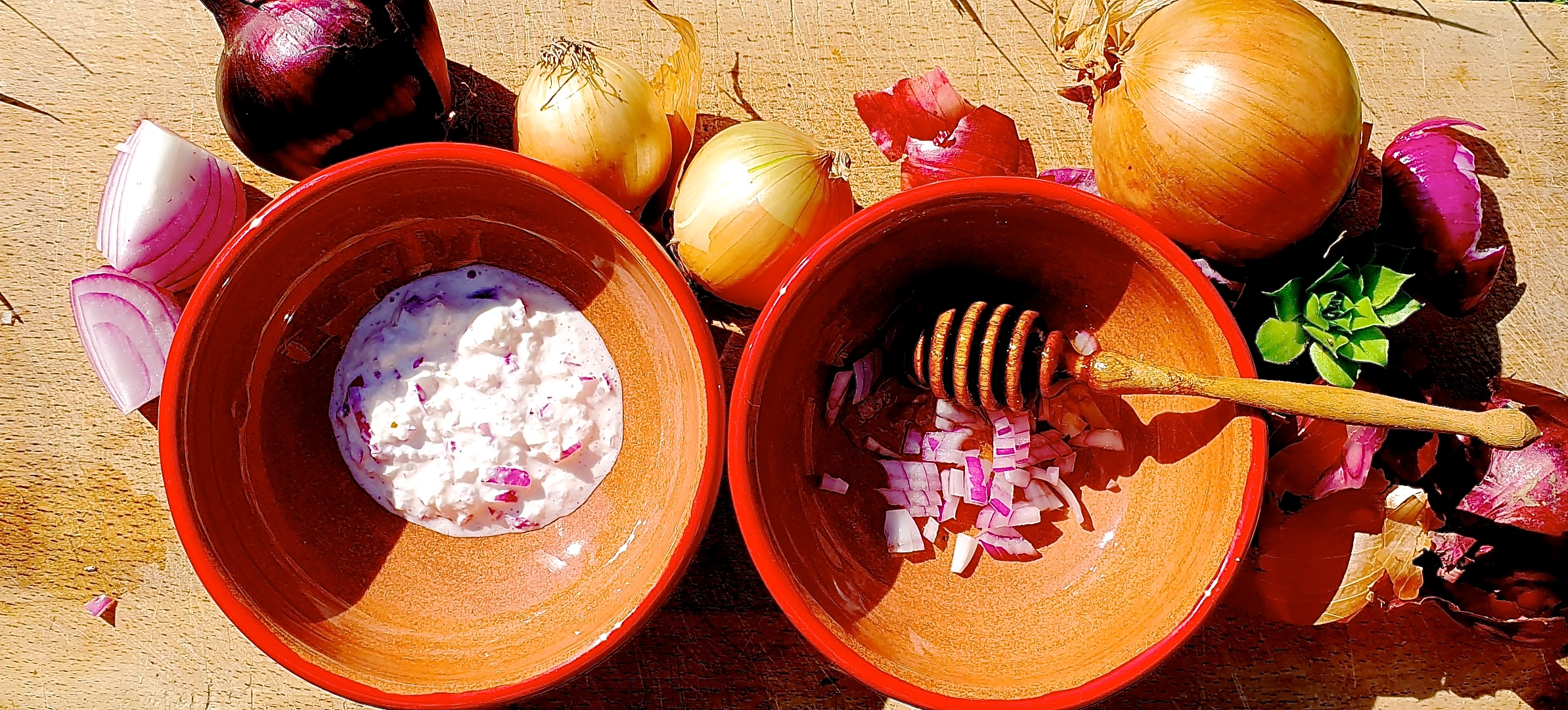 Zwiebel aufgeschnitten in Schale mit Joghurt