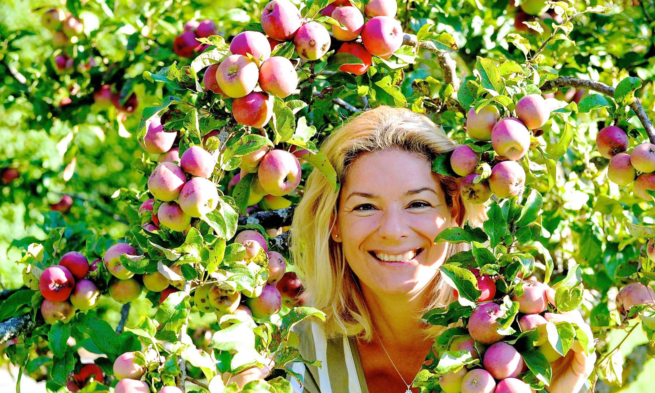 Frau schaut durch Zweige eines Apfelbaumes