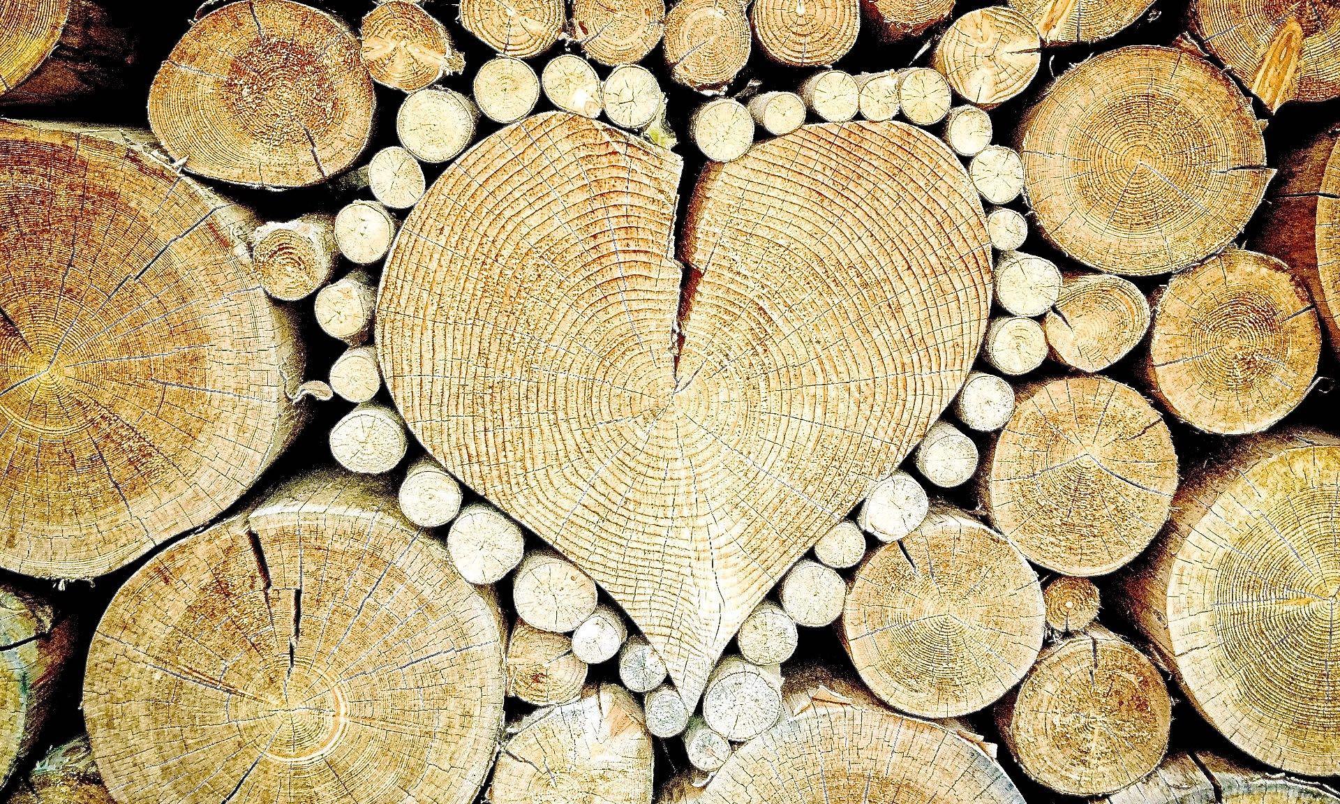 Herz aus Holz in Holzscheiten