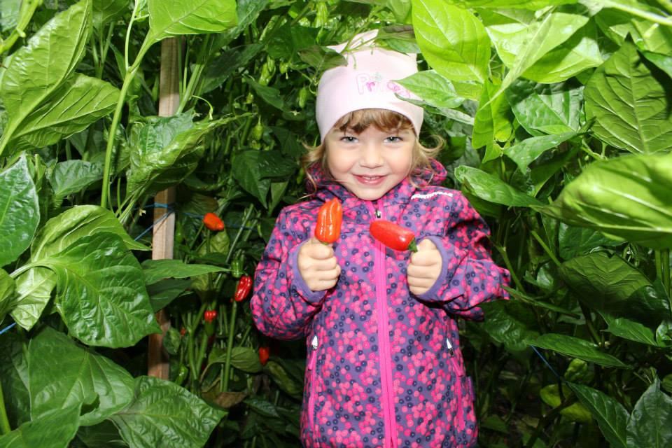 Kleines Mädchen mit Chili in den Händen